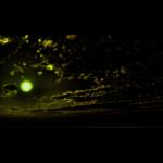 【CG】緑色に輝く恒星と暗闇に浮かぶ雲【背景画像】 sky_0021