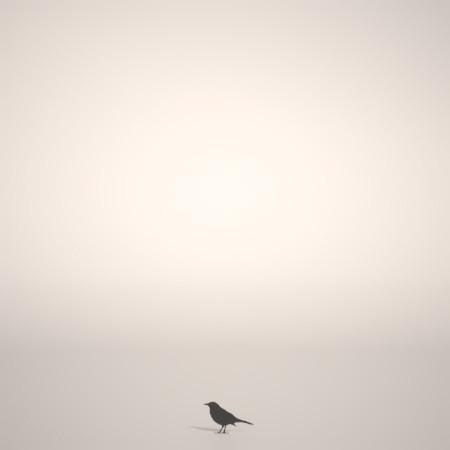 formZ 3D シルエット silhouette 動物 animal 鳥 とり バード bird