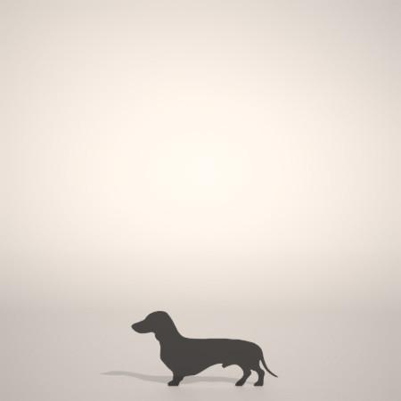 formZ 3D シルエット silhouette 動物 animal 犬 いぬ イヌ dog ダックスフンド