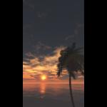 【CG】海と太陽とヤシの木【背景画像】 bgi_0029