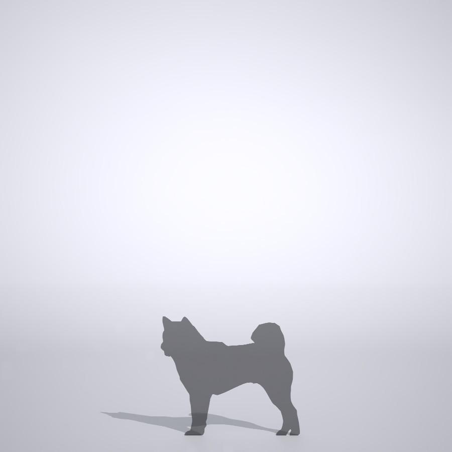 柴犬の3dCADデータ│ポリ板 シルエット 動物 犬 animal dog Shiba inu│3d cad データ フリー ダウンロード 無料 商用可能 建築パース フリー素材 formZ 3D 3ds obj Free download│digital-architex.com